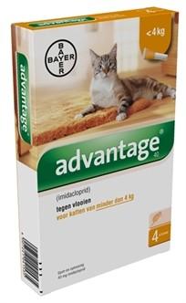 Advantage kat 40> 4kg 4 pipetten-0