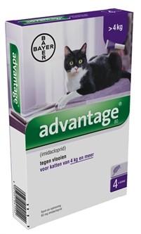 Advantage Kat 80 > 4kg 4 pipetten -0
