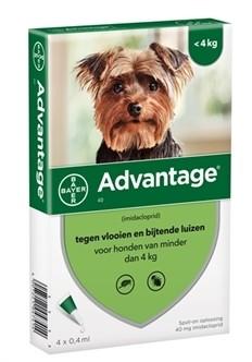 Bayer Advantage voor de hond (voor honden van minder dan 4kg - verpakt per 4 pipetten)-0