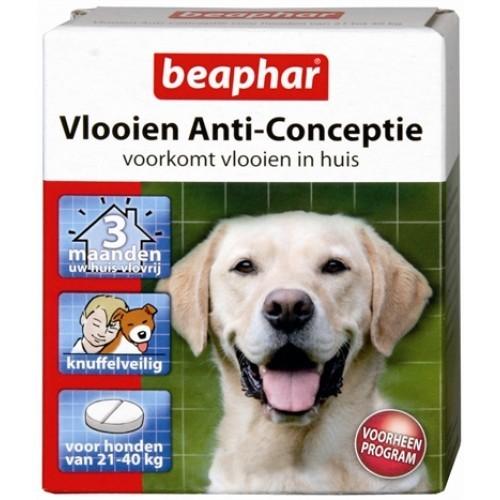 Beaphar Vlo anti conceptie hond large-0