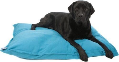 Hondenkussen Aqua-0