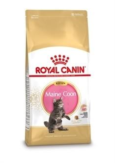 Royal Canin Kitten Maine Coon 4KG-0