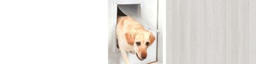 Hondenluik