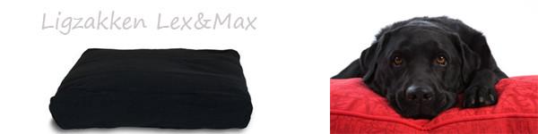 Lex en Max ligzak