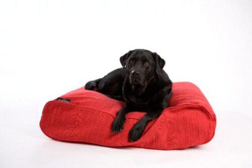 Hondenkussen ligzak CHIC 100x70x21cm rood-0