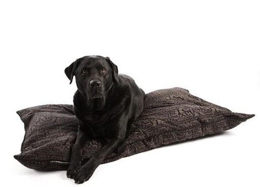 Hondenkussen Chic Antraciet 120 cm-0