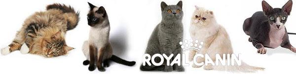 Royal Canin voor raskatten