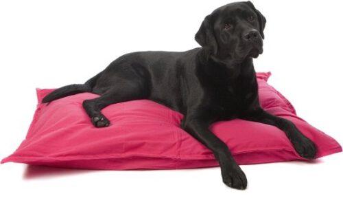 Hondenkussen Fuchsia Roze-0