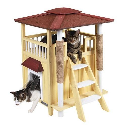 Kattenhuis Toscana-0