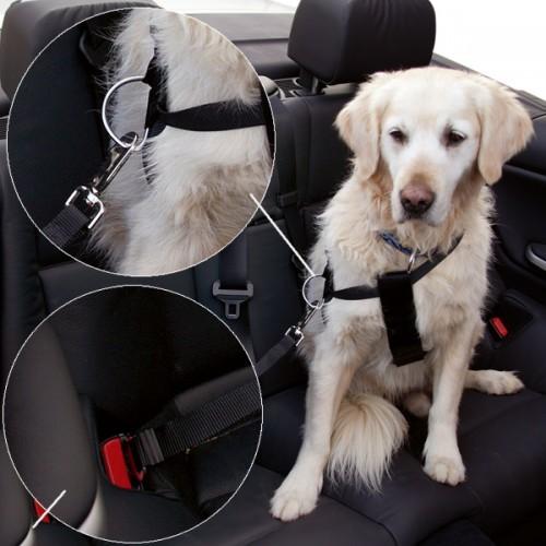 Veiligheidsgordel hond 50-70 cm borstomvang-0