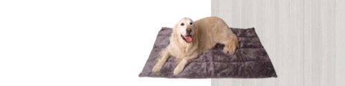 Hondenkleden en Hondendekens