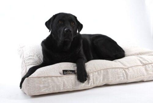 Hondenkussen Boxbed Chic Ecru-0
