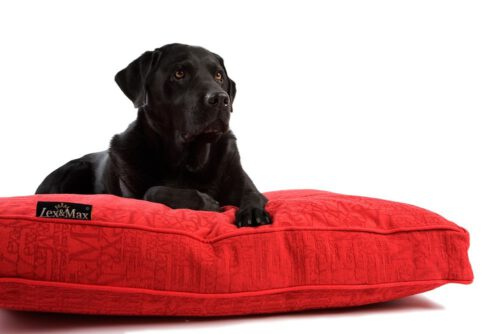 Hondenkussen Boxbed Chic Rood-0