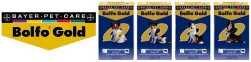 Bolfo Gold