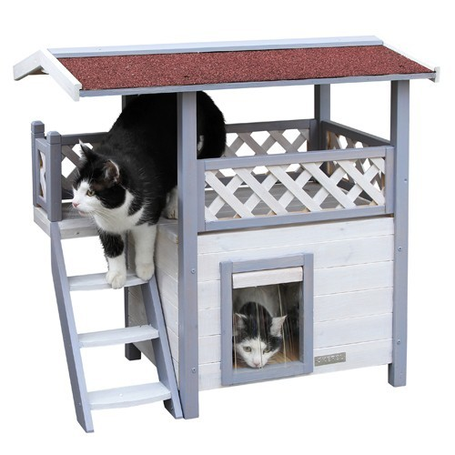 Kattenhuis Lodge Ontario-0