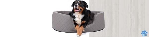 Orthopedische Hondenmanden