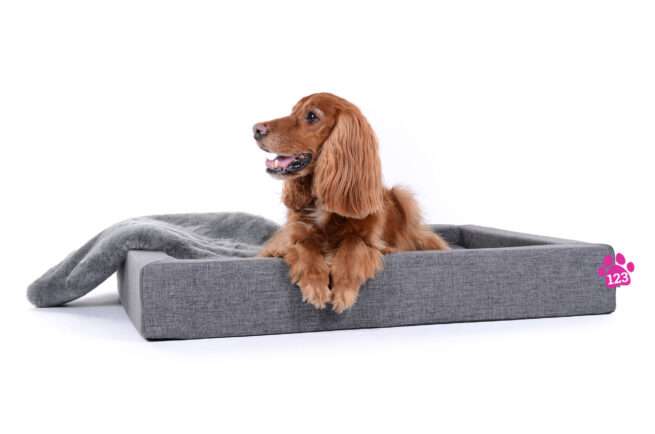 Hondenmand Dream Rectangle Grijs-14820