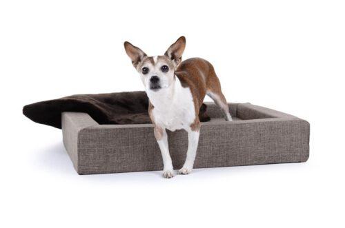 Hondenmand Dream Rectangle Crème-0