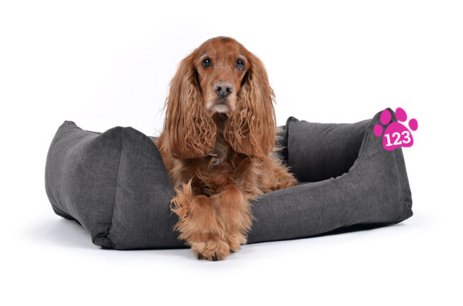 Hondenmand Comfort Dream Grijs-14860