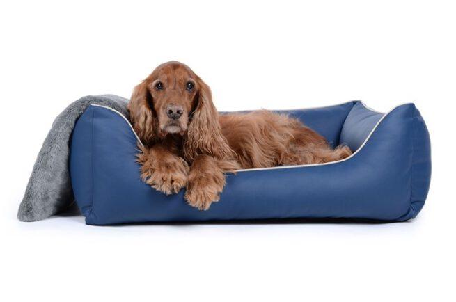 Hondenmand Ultimate Dream Blauw-0