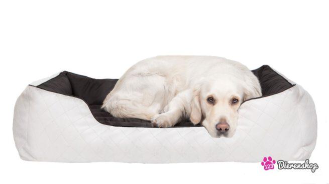 Hondenmand Indira Perfect Wit Zwart-19960