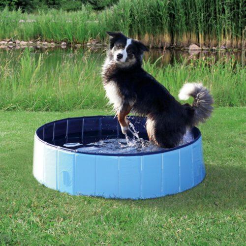 Hondenzwembad 80 cm-0