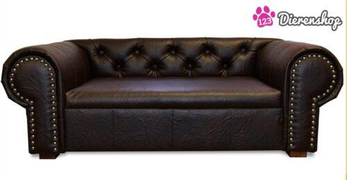 Hondenbank Chesterfield Bruin XL-0