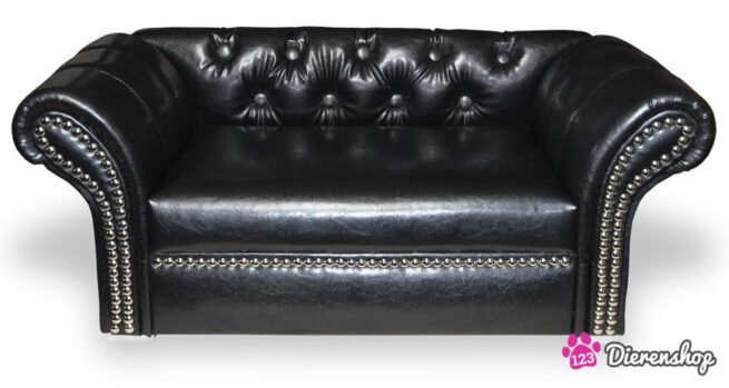 Hondenbank Chesterfield Excellent Large-0