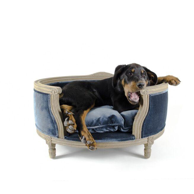 Hondenmand Lord Lou Royal Blue Velvet Medium-0