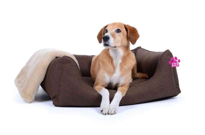 Hondenmand Soft Dream Deluxe Bruin-17328