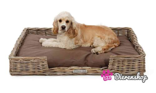 Hondenmand Rotan Low Bed-0