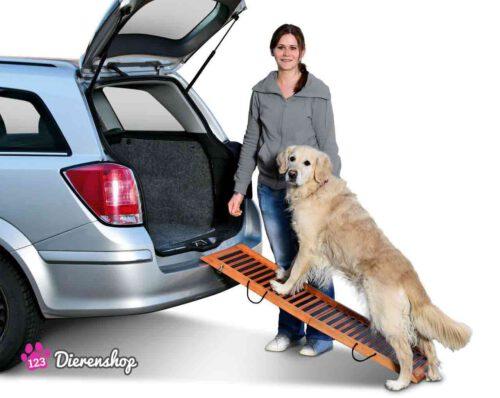 Honden Loopplank Gangway-0